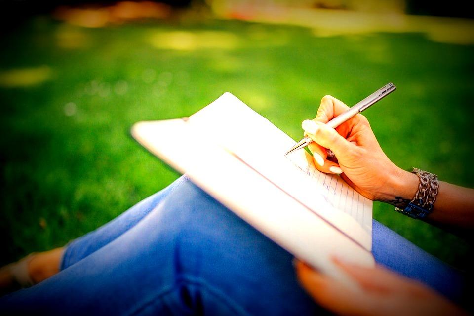 novel, writing, start up